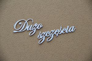 http://www.scrapiniec.pl/pl/p/Duzo-szczescia-zestaw-10-napisow/3662