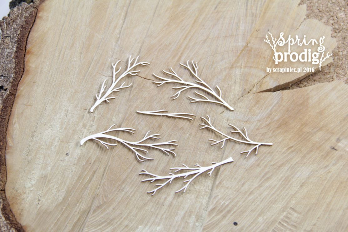 http://www.scrapiniec.pl/pl/p/Spring-Prodigy-Bare-branches-nagie-galezie/3991